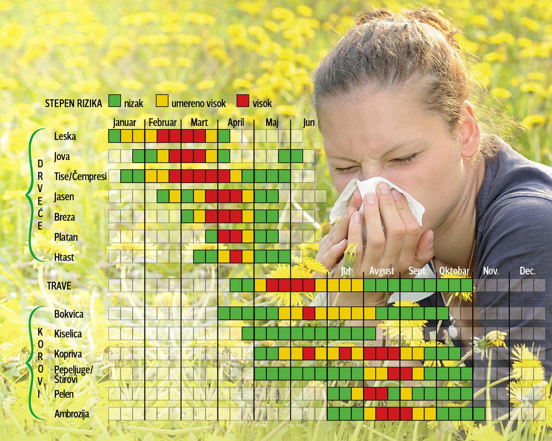 _alergije1.jpg blic